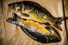 Fresh raw mirror carp fish on craft paper, top view, rustic style. Fresh raw mirror carp fish on craft paper, top view, rustic minimalist style Royalty Free Stock Photography