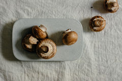 Fresh raw mushrooms, in blue Stone table. Portobello variety Stock Images