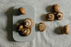 Fresh raw mushrooms, in blue Stone table. Portobello variety, from above Royalty Free Stock Photo
