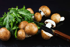 Fresh raw mushrooms brown champignons and green arugula on a dar Royalty Free Stock Images