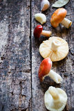 Fresh raw mushrooms and garlic on wooden background. Selective focus Royalty Free Stock Images