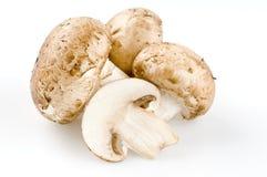 Fresh raw mushrooms isolated on white Royalty Free Stock Images
