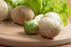 Fresh raw mushrooms and lettuce. Raw mushrooms and lettuce on a wooden board Royalty Free Stock Image
