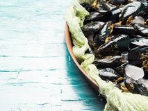 Fresh raw mussels on rusty tray. Seafood concept Stock Photo