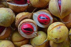 Fresh raw nutmeg Stock Photos