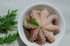 Fresh raw octopus in a bowl. Concept - healthy food, longevity,. Mediterranean diet Royalty Free Stock Photography