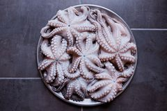 Fresh raw octopus on a large platter. Concept - healthy food, lo. Ngevity, Mediterranean diet. A big catch Royalty Free Stock Photos