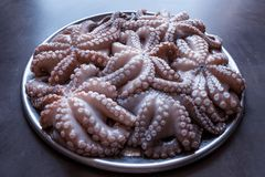 Fresh raw octopus on a large platter. Concept - healthy food, lo. Ngevity, Mediterranean diet. A big catch Stock Photo