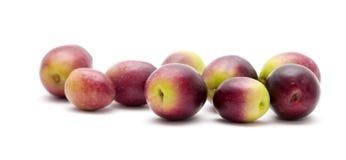 Fresh raw olives Stock Image