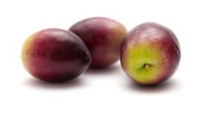 Fresh raw olives Royalty Free Stock Image