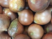 Fresh raw onion. Texture pattern background Royalty Free Stock Photo