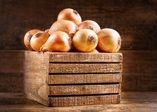 Fresh raw onions in a wooden box Royalty Free Stock Photography