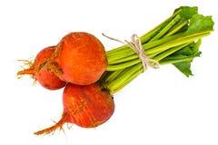 Fresh Raw Orange Beetroot, Beet. Studio Photo Stock Image