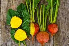 Fresh Raw Orange Beetroot, Beet. Studio Photo Stock Images