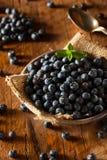 Fresh Raw Organic Blueberries. In a Bowl Stock Photos