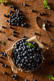 Fresh Raw Organic Blueberries. In a Bowl Stock Photography