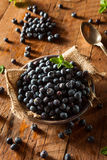 Fresh Raw Organic Blueberries. In a Bowl Stock Photo
