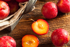Fresh Raw Organic Cherry Plums. Ready to Eat Stock Photo