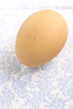 Fresh raw organic egg on table cloth Royalty Free Stock Image