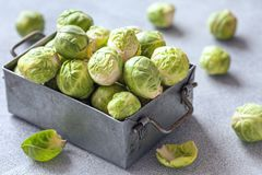 Fresh raw organic green brussel sprouts. In a metal box Stock Photography