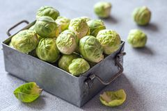 Fresh raw organic green brussel sprouts. In a metal box Stock Photo