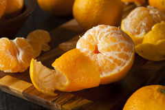 Fresh Raw Organic Mandarin Oranges Royalty Free Stock Photography