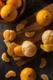 Fresh Raw Organic Mandarin Oranges Stock Photos