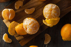 Fresh Raw Organic Mandarin Oranges. Ready to Eat Royalty Free Stock Image