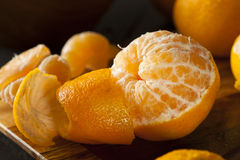 Fresh Raw Organic Mandarin Oranges. Ready to Eat Stock Photos