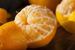 Fresh Raw Organic Mandarin Oranges Royalty Free Stock Image