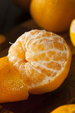 Fresh Raw Organic Mandarin Oranges. Ready to Eat Royalty Free Stock Photos