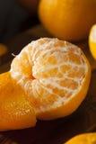 Fresh Raw Organic Mandarin Oranges Royalty Free Stock Photos