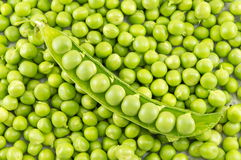 Fresh raw organic peas ready for cooking. Lunch Stock Photography