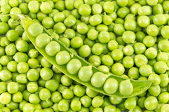 Fresh raw organic peas ready for cooking. Lunch Stock Image