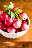 Fresh raw organic red apples in a bowl on a wooden table, selective focus. Harvesting time. Healthy and organic food option Royalty Free Stock Images