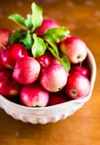 Fresh raw organic red apples in a bowl on a wooden table, selective focus. Harvesting time. Healthy and organic food option Stock Image