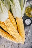 Fresh raw organic sweet corn cobs. On rustic background Stock Image
