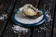 Fresh raw oyster with ice on blue plate. Served with salt on dark wood background Stock Photos