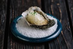 Fresh raw oyster with ice on blue plate. Served with salt on dark wood background Stock Photo