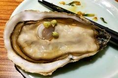 Fresh raw oyster  in restaurant. Fresh oyster  in restaurant Stock Image