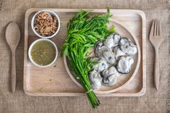 Fresh raw oyster with spicy sauce. Thai style seafood Royalty Free Stock Image