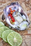 Fresh raw oysters. Chilli and lemon Stock Photo