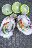 Fresh raw oysters. Chilli and lemon Stock Photography