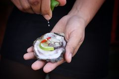 Fresh raw oysters. Chilli and lemon Stock Images
