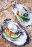 Fresh raw oysters. Chilli and lemon Royalty Free Stock Photography