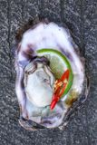 Fresh raw oysters. Chilli and lemon Royalty Free Stock Images