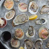 Fresh raw oysters on ice. With lemon Royalty Free Stock Photo