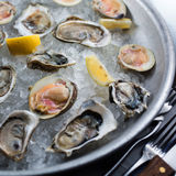 Fresh raw oysters on ice. With lemon Stock Photos