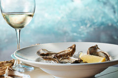 Fresh raw oysters on ice with lemon. On a table with a glass of white wine Stock Photos