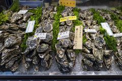 Fresh raw oysters and price tags at the Omicho Market. Kanazawa - Japan, June 8, 2017: Fresh raw oysters and price tags at the Omicho Market Stock Images